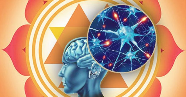 science-behind-yoga_yantra-brain